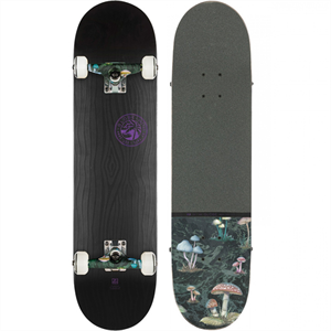 GLOBE G2 RAISED UP 7.75 SKATEBOARD-skate-Blitz Surf Shop