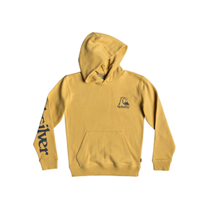Win19 QUIKSILVER SPRING ROLL HOOD YOUTH -sweatshirts-Blitz Surf Shop