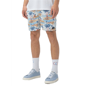 Sum19 BARNEY COOLS AMPHIBIOUS 17 SHORTS-mens-Blitz Surf Shop
